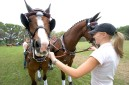 ###Ocala Star-Banner, The Live Oak International Driving Event at Live Oak Plantation, Ocala, FL - Contact photographer at 352-598-7976### Emma Larsson(cq) right, a groom from Sweden, helps control the horses for Chester Weber(cq), of Ocala. The four horses, two grooms and Weber(cq) were making last moment preparations before entering the show ring for ithe Cone Event for Four In Hand Competition at The Live Oak International Driving Event at Live Oak Plantation. Weber's team of horses for the event consisted of a team of two Dutch Warmbloods, one Polish Warmblood and one Danish Warmblood horses, according to Taren Lester(cq) of England, a head groom riding in the rear of the carriage, Sunday afternoon, March 19, 2006, Ocala, FL. ( Jannet Walsh/Star-Banner)2006