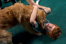###Rare Redhead: Michael and LuAnne Warren family of five redheads and red haired dog, Ocala### Redhead Matthew Warren, age 8, plays with Jenny the Golden Retriever, also a redhead. His parents Michael and LuAnne Warren and his two brothers Jonathan Warren, 3, and Paul Warren, 6, all have red hair, Monday evening, April 11, 2005, Ocala, FL, USA. (Jannet Walsh/Star-Banner)2005