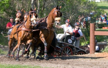 ###Ocala Star-Banner, The LIve Oak International Driving Event at Live Oak Plantation, Ocala, FL - Contact photographer at 352-598-7976### Chester Weber(cq), of Ocala, center in white, with two grooms, goes through Millers'(cq) Crossing, during the Four In Hand competition at The LIve Oak International Driving Event at Live Oak Plantation, Ocala Saturday afternoon, March 19, 2006, Ocala, FL. ( Jannet Walsh/Star-Banner)2006